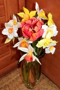 нарциссы и тюльпан